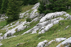 Mountain slope rocks landscape. In green background Stock Photography