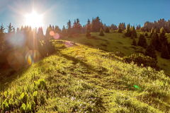 Mountain slope Stock Photography
