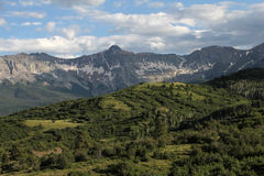 Mountain Slopes of Colorado Stock Photography