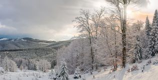 Winter landscape of the Carpathian Mountains at sunset Stock Photo