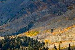 Mountain slopes in Fall Royalty Free Stock Image