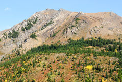 Mountain slopes with forests Royalty Free Stock Photos