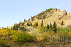 Mountain slopes with forests Stock Photography