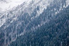 Mountain slopes Royalty Free Stock Photo