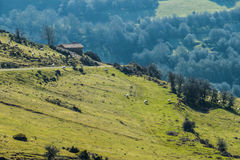 Mountain slopes. Some dispersed sheeps pasturing on a steep slope in the mountain Stock Images