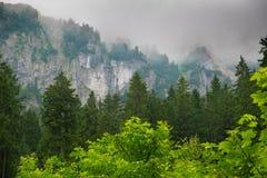 Mountain in Slovakia stock image