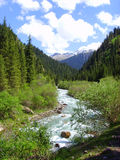 Mountain small river. Karakol, Kyrgyzstan. Gorge Dzheti-Ogus in the east of the country Stock Images