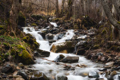 Mountain small river flowing among moss-grown stones Stock Images