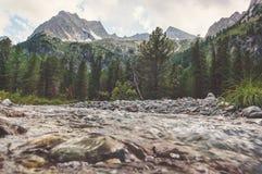 mountain smoky stream στοκ εικόνα με δικαίωμα ελεύθερης χρήσης