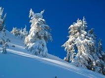 Mountain Snow stock photos