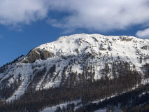 Mountain and snow. A mountain in Livigno in winter season Royalty Free Stock Images