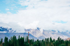 Mountain with snow on top and green trees in bottom with red power pole in Leh, Ladakh, India.  Stock Photography