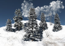 Mountain snow and trees Stock Image