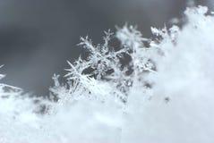 Mountain Snowflake Macro 1 Royalty Free Stock Photos