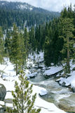Mountain Snowy Creek Royalty Free Stock Image
