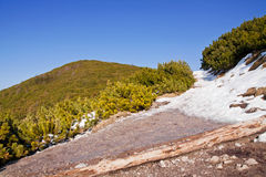 Mountain snowy landscape with rock path Royalty Free Stock Photo