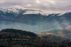 Mountain with snowy top. Over the hill with forest. lovely late autumn scenery with light beams striking through overcast sky Stock Images