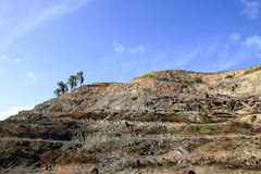 Mountain soil. That is the area of agriculture Stock Image
