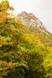 Mountain Southern Demerdzhi. Stock Image