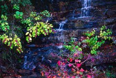 Mountain Spring. Cascading down rock steps in the fall stock photos