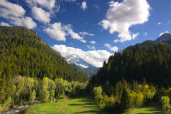 Mountain Spring Stock Image
