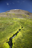 Mountain spring Stock Images