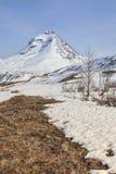 Mountain Spring Stock Photos