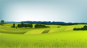 Mountain spring landscape. Vector illustration of green spring hills Royalty Free Stock Photos