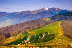 Mountain spring landscape in sunlight. View of the old farm Stock Images