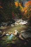 Mountain spring/river during autumn Royalty Free Stock Image
