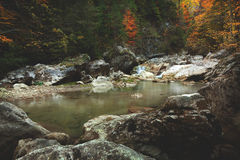 Mountain spring/river during autumn Royalty Free Stock Photos