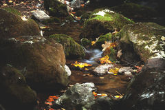 Mountain spring/river during autumn Royalty Free Stock Images