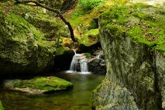 Mountain spring water Royalty Free Stock Photo