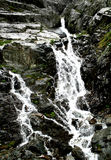 Mountain spring. Water springing out of mountain rocks Stock Images