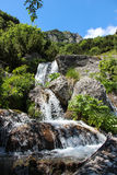 Mountain Spring Waterfalls in Bucegi mountains Stock Photo