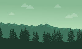 Mountain with spruce scenery silhouettes Royalty Free Stock Photos