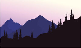 Mountain and spruce of silhouette Royalty Free Stock Photo