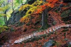 Mountain Stairs in Autumn Stock Photos