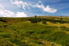 Mountain steppe. On the mountain ridges Giant mountains Royalty Free Stock Photography