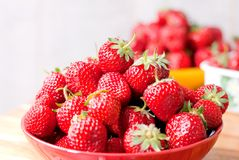 Mountain strawberry red plate, on a background of strawberries, Stock Images