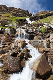 Mountain stream. Summer season, vertical orientation Stock Photography