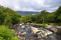 Mountain Stream. Near killarney,on Ring Of Kerry, Co.Kerry, Ireland Royalty Free Stock Images