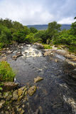 Mountain Stream. Near killarney,on Ring Of Kerry, Co.Kerry, Ireland Stock Images