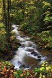 Mountain Stream. Pretty mountain stream in the fall season Stock Photo