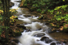 Mountain Stream. Close up of a pretty mountain stream in the fall season Stock Images