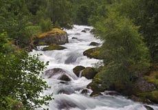 Mountain stream. Fast running stream Stock Image
