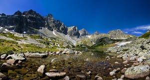 Mountain stream. Mountain stream in the High Tatras Royalty Free Stock Photography