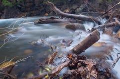 Mountain stream. Through debris, Utah Stock Photography