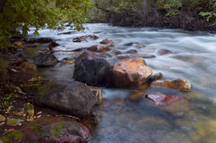 Mountain stream. Utah Wasatch Mountains Royalty Free Stock Images