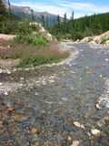 Mountain Stream. Clear stream with mountains in the background stock photos